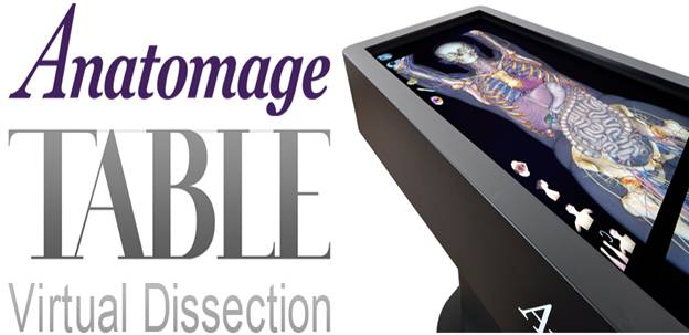Anatomage Table Virtual Dissection